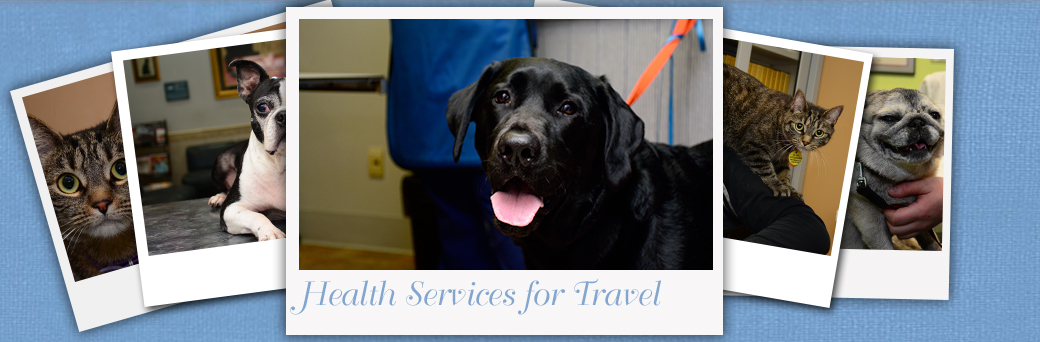 Jefferson Animal Hospital Fern Creek Health Services for Travel