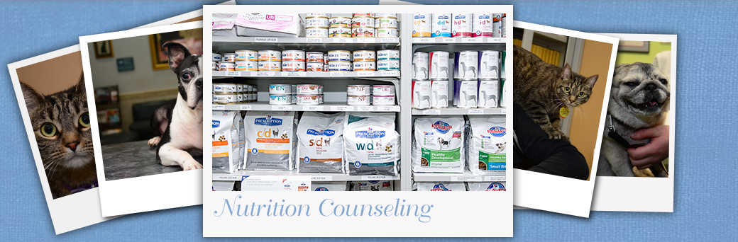 Jefferson Animal Hospital Fern Creek Nutrition Counseling