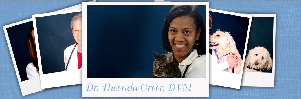 Jefferson Animal Hospital Fern Creek About Dr. Greer