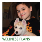 Pet Wellness Plans