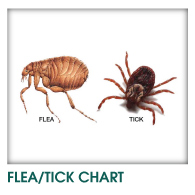 Flea and Tick Chart