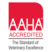 What is an AAHA Accredited hospital?