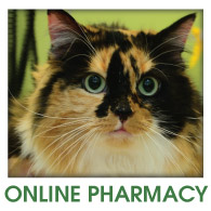 Fern Creek Wellness Center Online Pharmacy