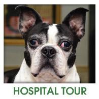 Fern Creek Wellness Center Hospital Tour