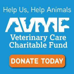 Donate to AVMF