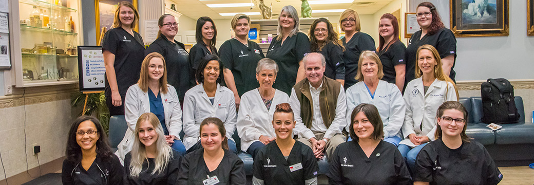 Excellence in veterinary care for the pets of Fern Creek