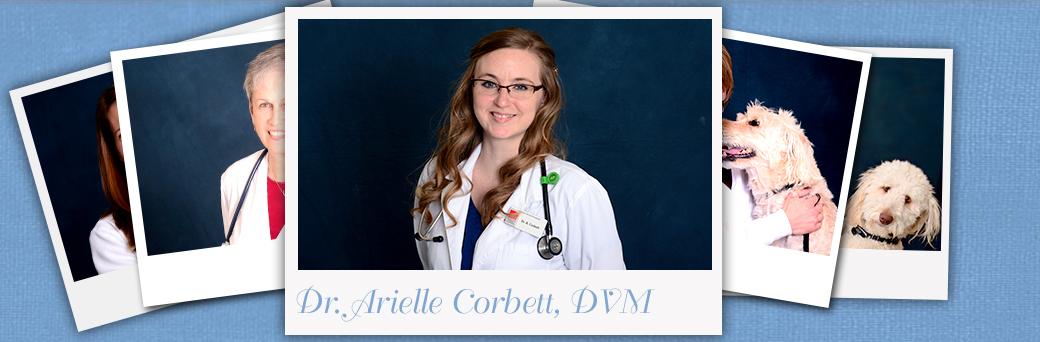 Jefferson Animal Hospital Fern Creek About Dr. Corbett