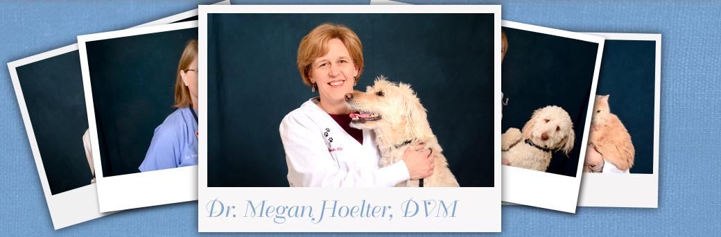 Jefferson Animal Hospital Fern Creek About Dr. Hoelter