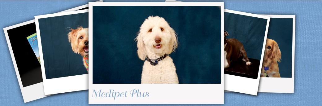 Jefferson Animal Hospital Fern Creek Medipet Plus Dogs