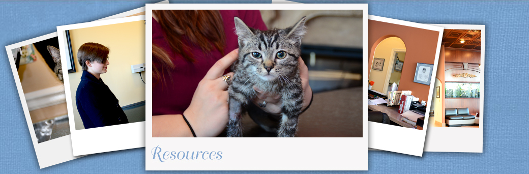 Jefferson Animal Hospital Fern Creek Medical Center Resources