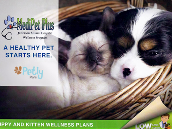 MediPet Plus for Puppies and Kittens at Fern Creek Medical Center